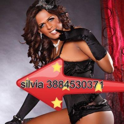 silvia71 3884530371