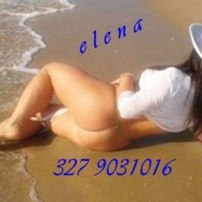 ELENAelena 3279031016