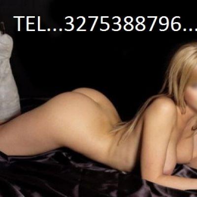 pysypysy878 3275388796